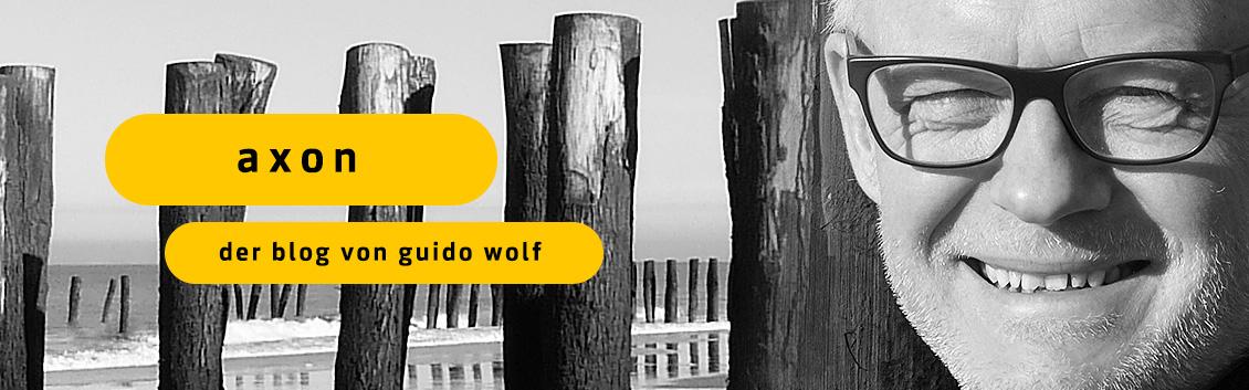 Axon Der Blog Von Guido Wolf Impulse Für